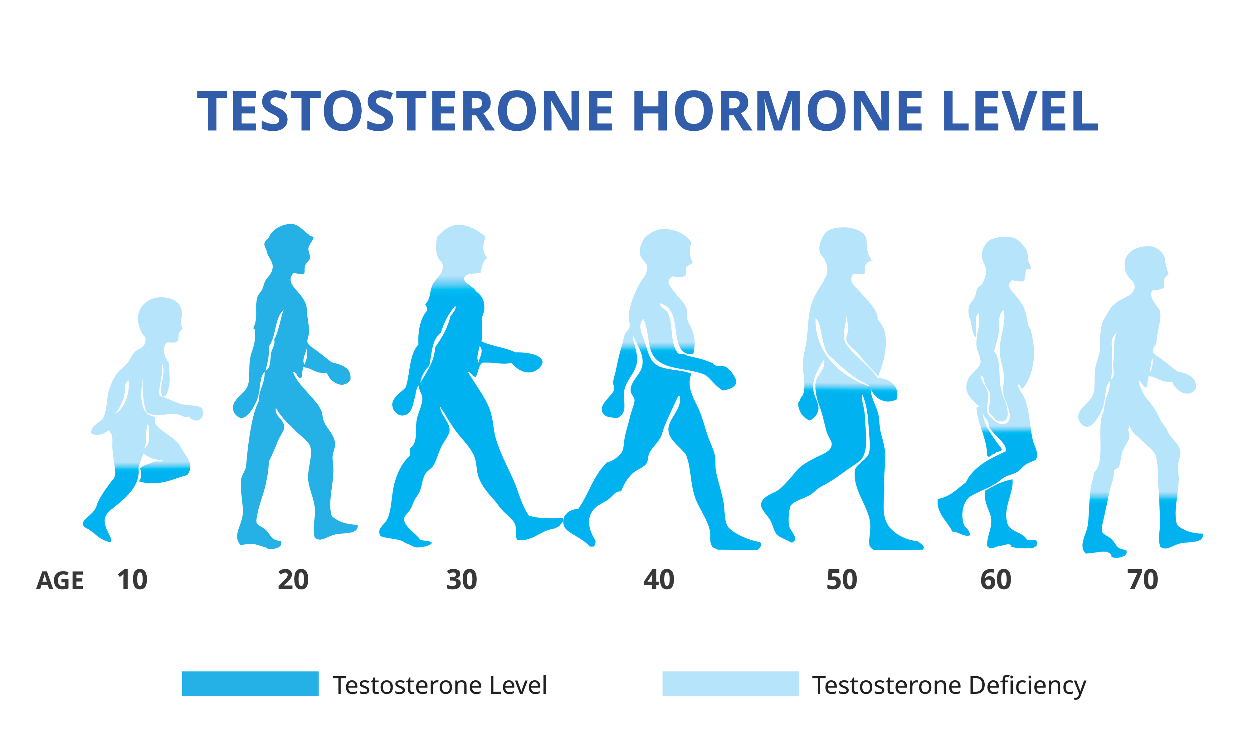testosterone through the ages
